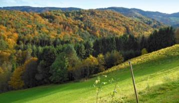 Herbstfarben verbreiten sich